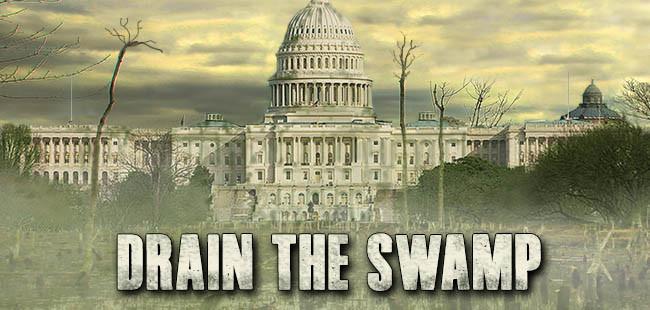 dcdrain-swamp-1