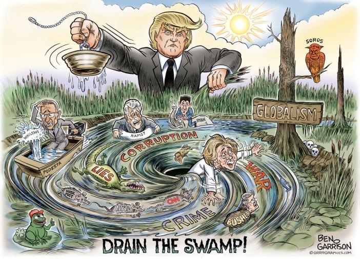 drain swamp 1