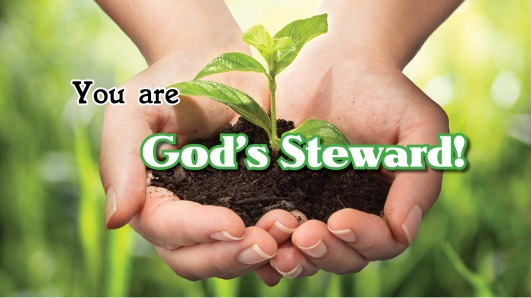 You are Gods steward16.jpg